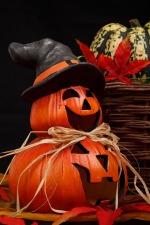 autumn-21498_960_720